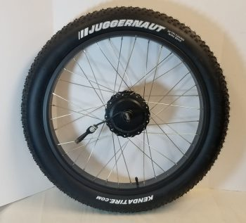 M1 Rear Wheel Assembly with Motor (750w)